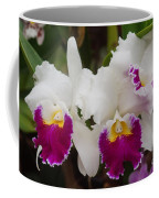 Orchids 198 Coffee Mug