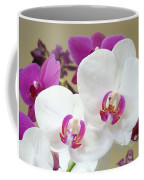 Orchids Floral Art Prints White Pink Orchid Flowers Coffee Mug