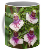 Orchids Four Coffee Mug
