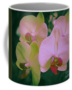 Orchids In Pink And Green Coffee Mug
