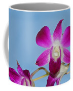 Orchids With Blue Sky Coffee Mug