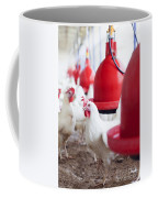 Organic Chicken Coop  Coffee Mug