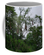 Oriole High Up In The Jungle Canopy Coffee Mug