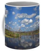 Orlando Wetlands Cloudscape 3 Coffee Mug