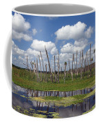 Orlando Wetlands Cloudscape Coffee Mug by Mike Reid