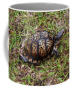 Box Turtle Coffee Mug