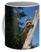 Orphaned Raccoon Coffee Mug