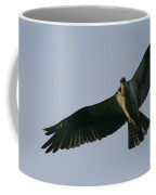 Osprey Above The Androscoggin Coffee Mug