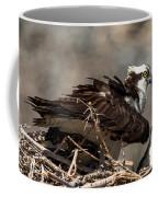 Osprey Family Huddle Coffee Mug by John Daly