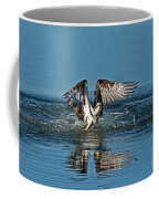 Osprey Getting Out Of The Water Coffee Mug