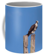 Osprey Giving Warning Coffee Mug