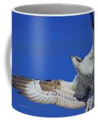 Osprey Grace And Beauty Coffee Mug