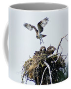 Osprey In Flight Over Nest Coffee Mug