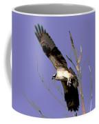 Osprey Lift Off Coffee Mug