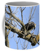 Osprey Meal Time Coffee Mug