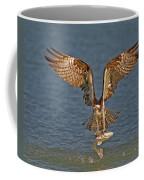Osprey Morning Catch Coffee Mug