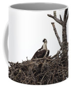 Osprey On A Nest In The Everglades Coffee Mug