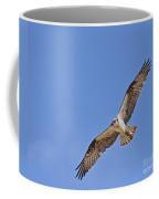 Osprey Pandion Haliaetus In Flight Coffee Mug
