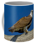 Osprey With Fish In Talons Coffee Mug