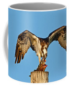 Osprey With Spotted Bass Coffee Mug