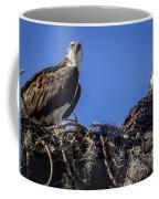 Ospreys In The Nest Coffee Mug
