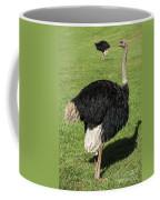 Ostrich 1 Coffee Mug