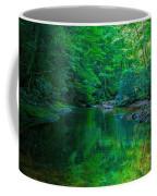 Otter Creek Reflection  Coffee Mug