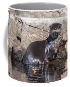 Otter Posing Coffee Mug