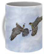 Young Peregrine Falcon And Ma Share In The Air Coffee Mug