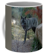 Out Of Africa Black Wolf Coffee Mug