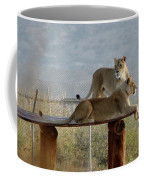 Out Of Africa Lions Coffee Mug