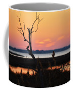 Ocean City Sunset Out On A Limb Coffee Mug
