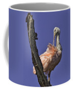 Out On A Limb Coffee Mug