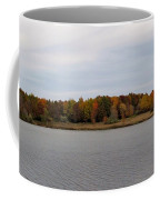 Over View Of Some Fall Colors For The Lake Coffee Mug