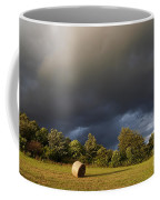 Overcast - Before Rain Coffee Mug by Michal Boubin