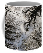 Overhead Trees In Exmoor, United Kingdom Coffee Mug