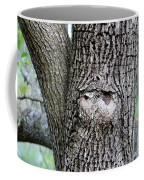 Owl Face Coffee Mug