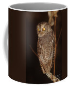 owl of Madagascar Coffee Mug