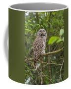 Up - Owl Coffee Mug