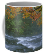 Oxtongue River Provincial Park, Dwight Coffee Mug