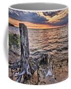 Oyster Bay Stump Sunset Coffee Mug