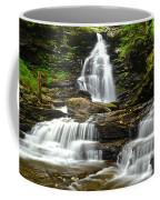 Ozone Falls Close Up Coffee Mug