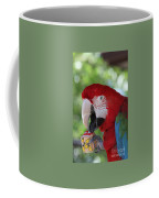 P Is For Parrot Coffee Mug