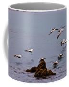 Pacific Landing Coffee Mug