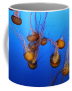Pacific Sea Nettles Coffee Mug