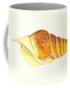 Pacific Triton Sea Shell Coffee Mug