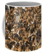 Pack Of Hound Dogs Coffee Mug