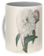 Paeonia Flagrans Peony Coffee Mug