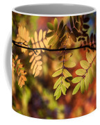 Paint  Coffee Mug