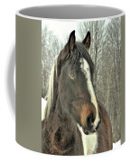 Paint Horse In Winter Coffee Mug